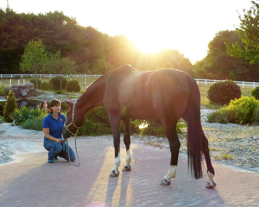 Corinna mit ihrem Pferd Latemir